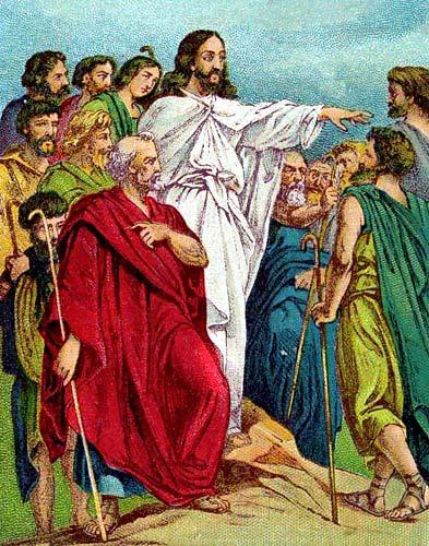 Med disiplene