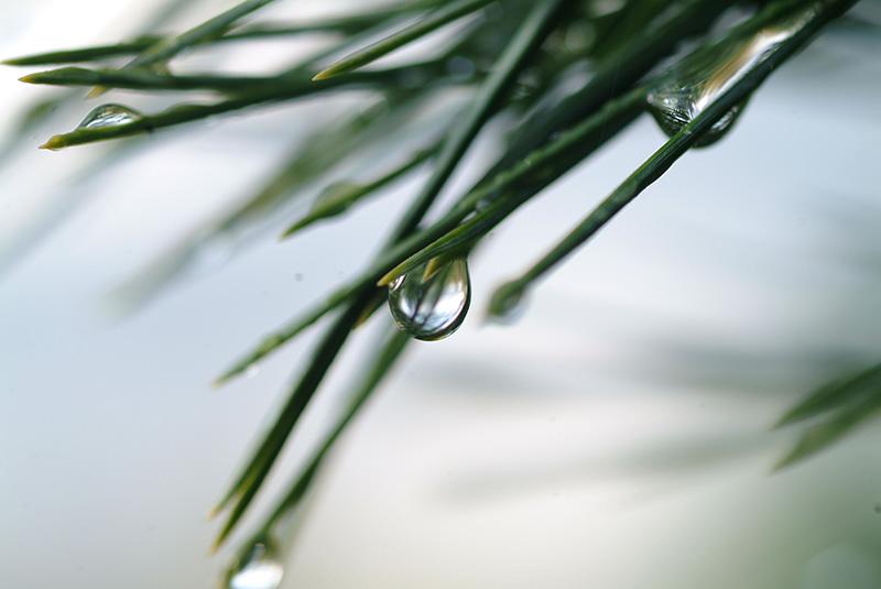 natur-vann6